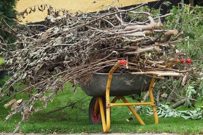 Have- og parkaffald - hvordan skal klimaaftrykket håndteres?