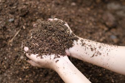 Sund jordbund – ny EU-strategi i høring