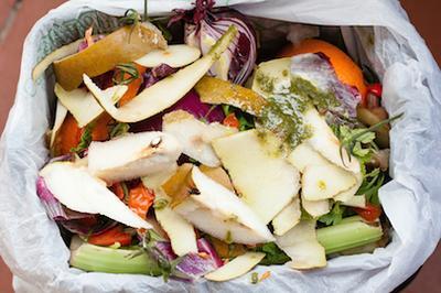 Nye idéer til organisk affald?